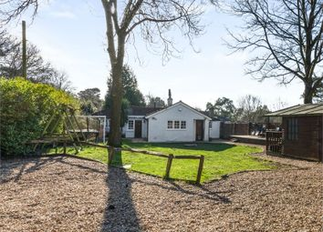 Thumbnail 3 bed detached bungalow for sale in Mill Road, Slindon Common, Arundel, West Sussex