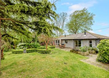 Thumbnail 4 bed detached bungalow for sale in Charlton, Chichester, West Sussex