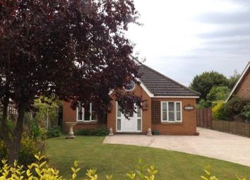 Thumbnail 2 bed bungalow for sale in Bunwell, Norwich, Norfolk