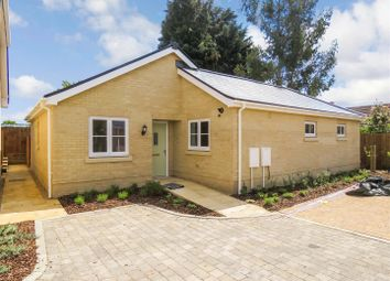 Thumbnail 3 bedroom detached bungalow for sale in Luke Street, Eynesbury, St. Neots