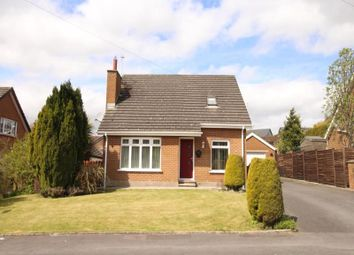 Thumbnail 4 bedroom bungalow for sale in Beverley Walk, Conlig, Newtownards