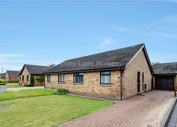 Thumbnail 2 bed bungalow for sale in Glen Sax Drive, Renfrew
