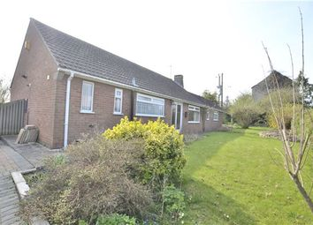 Thumbnail 3 bed detached bungalow for sale in Stantway Lane, Westbury-On-Severn, Gloucestershire