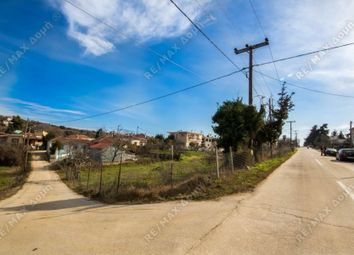 Thumbnail Land for sale in Argalasti, Thessalia, Greece