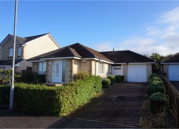 Thumbnail 3 bed detached bungalow for sale in Dippol Crescent, Cumnock
