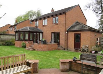 Thumbnail 4 bed detached house to rent in Southfield, Burgh-By-Sands, Carlisle