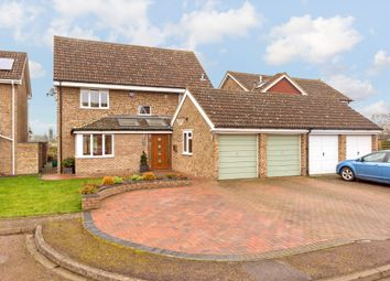 Thumbnail 4 bed detached house for sale in Kittiwake Close, Biggleswade