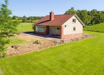 Thumbnail 3 bed detached house for sale in Woodhall Road, Braidwood, Carluke, South Lanarkshire