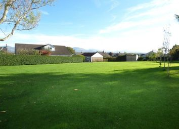 Thumbnail 4 bed bungalow for sale in Penlon, Menai Bridge, Sir Ynys Mon