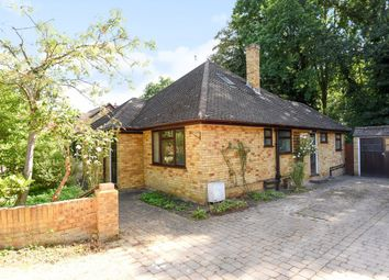 Thumbnail 4 bed detached house to rent in Ottermead Lane, Ottershaw, Chertsey
