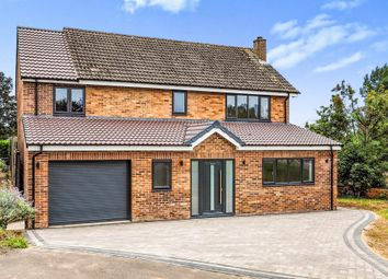 Thumbnail 4 bed detached house for sale in Wilson Rise, Melbourne, Derby