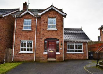 Thumbnail 4 bedroom detached house for sale in Mount Eagles Square, Belfast