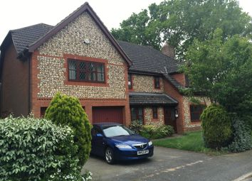 Thumbnail 5 bed detached house to rent in Brookhill Way, Rushmere St. Andrew, Ipswich