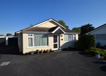 Thumbnail 3 bed detached bungalow for sale in Davies Avenue, Whiterock, Paignton, Devon