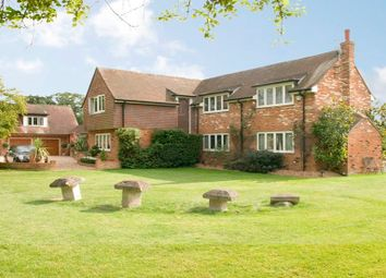 Thumbnail 6 bed detached house to rent in Sturt Green, Holyport, Maidenhead