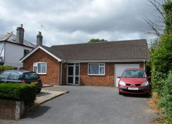 Thumbnail 3 bed bungalow for sale in Paignton, Devon