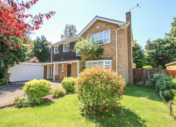 Thumbnail 4 bed detached house to rent in Guildcroft, Guildford
