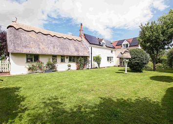 Thumbnail 4 bed detached house for sale in The Common, West Wratting