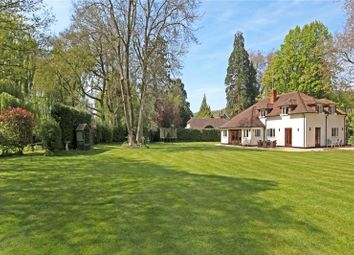 Thumbnail 5 bedroom detached house for sale in Station Road, Gomshall, Guildford, Surrey