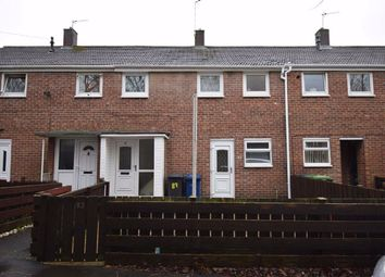 2 bed terraced house to rent in Olive Street, South Shields NE33