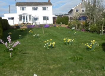 Thumbnail 3 bed detached house for sale in Trinity Road Harrow Hill, Drybrook, Gloucestershire