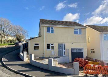 Thumbnail 4 bed detached house for sale in Sun Valley Close, Furzeham, Brixham