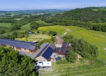 Thumbnail 4 bed barn conversion for sale in Kerry, Newtown