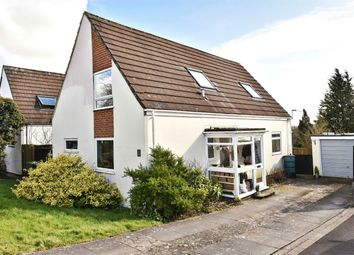 Thumbnail 4 bed detached house for sale in Buttermere Gardens, Alresford