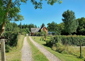 Thumbnail 4 bed cottage for sale in Minstead, Lyndhurst, Hampshire