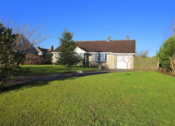 Thumbnail 3 bed detached bungalow for sale in Orchard Close, Coxley Wick, Wells