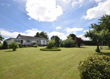 Thumbnail 3 bed detached bungalow for sale in Petrockstow, Okehampton