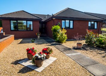 Thumbnail 4 bed detached bungalow for sale in Carrongrove Avenue, Falkirk