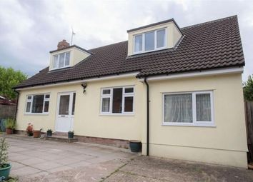 Thumbnail 5 bed detached bungalow to rent in Cornfield Road, Bury St. Edmunds