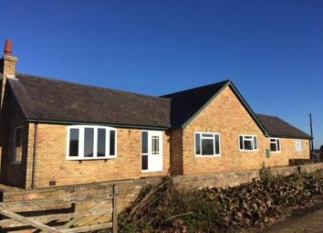 Thumbnail 3 bedroom detached bungalow to rent in Kimbolton, St Neots, Cambridgeshire