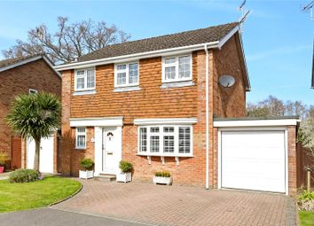 Thumbnail 4 bed detached house for sale in Hamilton Close, Bordon, Hampshire