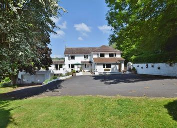 Thumbnail 4 bed detached house for sale in Orcop, Hereford