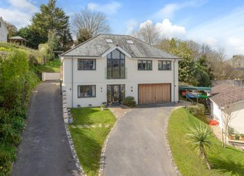 Thumbnail 4 bed detached house for sale in Springfield Drive, Kingsbridge