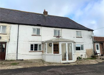 Thumbnail 2 bed semi-detached house to rent in Pulham, Dorchester