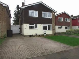 Thumbnail 4 bedroom detached house for sale in Essex Road, Stevenage