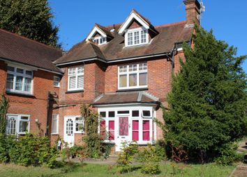 Thumbnail Studio to rent in 46 Busbridge Lane, Godalming