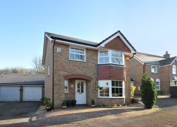 Thumbnail 4 bed detached house to rent in Octavian Close, Hatch Warren, Basingstoke