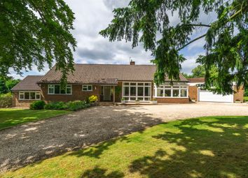 Thumbnail 4 bed detached bungalow for sale in Raglan Road, Reigate, Surrey
