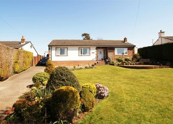 Thumbnail 3 bed detached bungalow for sale in The Firs, Hornsby, Armathwaite, Cumbria
