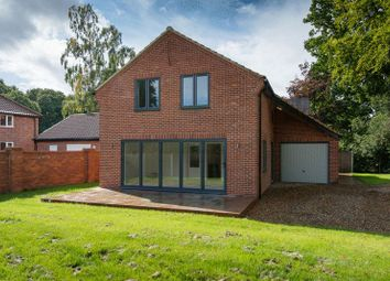Thumbnail 3 bed detached house for sale in Poringland Road, Stoke Holy Cross, Norwich