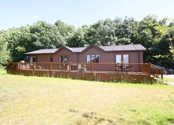Thumbnail 4 bed bungalow for sale in Woodham Walter, Maldon, Essex