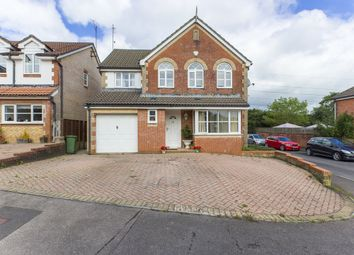 Thumbnail 4 bed property for sale in Birch Grove, Henllys, Cwmbran