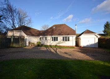 Thumbnail 4 bed detached house for sale in Combe Florey, Taunton