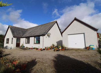Thumbnail 3 bed detached bungalow for sale in Longview, Badnellan, Brora