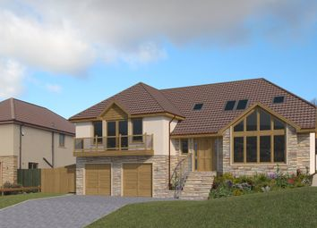 Thumbnail 4 bedroom detached house for sale in Thunderton Place, Elgin