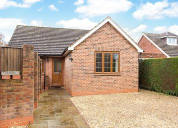 Thumbnail 3 bed bungalow to rent in Back Lane, Bucks Horn Oak, Farnham